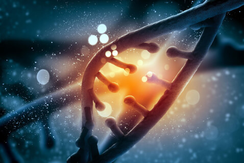 4 Things Your DNA Can Tell You About Your Health